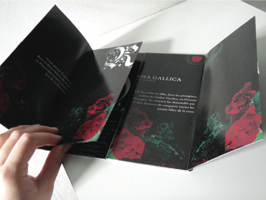 """Conception et création du catalogue de vente par correspondance de roses anciennes """"Rosa Gallica"""". Projet réalisé lors des étude et non réel."""
