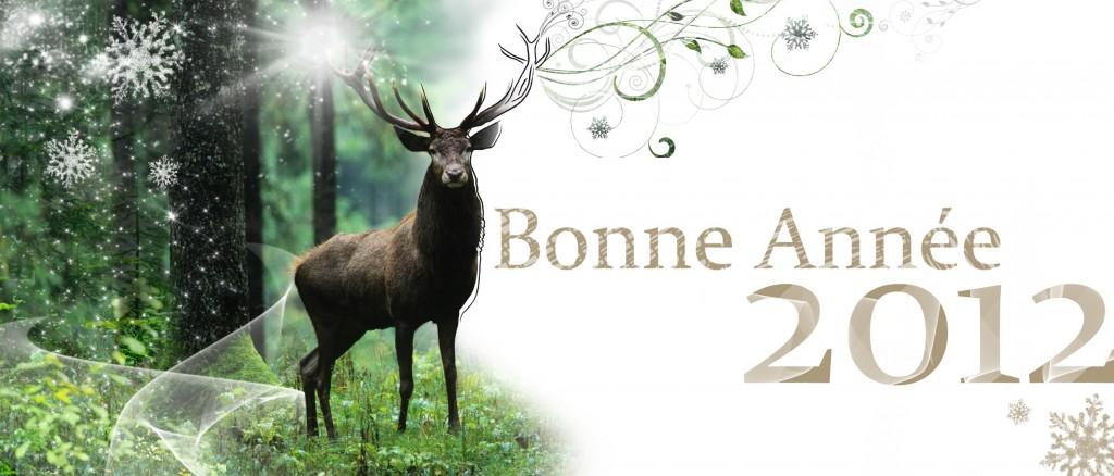 Création et réalisation d'un carte de vœux personnelle pour l'année 2012. Le but étant de souhaiter une année pleine de féérie et de projets réalisés forts et impressionnant (comme peut l'être le cerf).