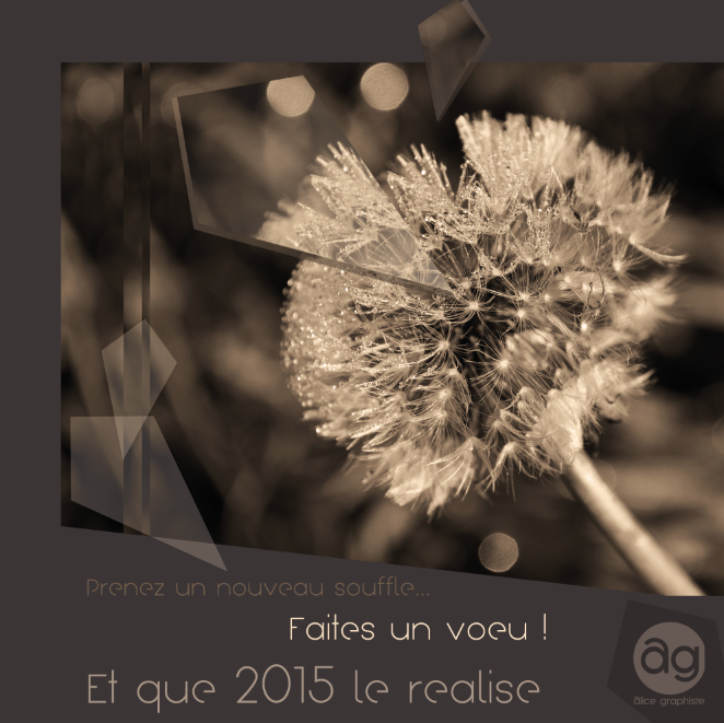Carte de Voeux our 2015 : Alice Graphiste